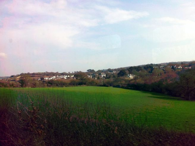 Country scenery as seen from the train