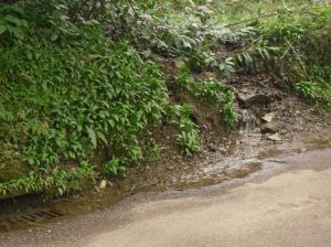 Photo of stream and mini-waterfall gushing into road and down drain