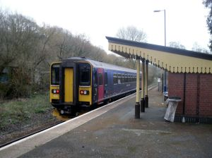 Photo of Class 153 train departing St Keyne