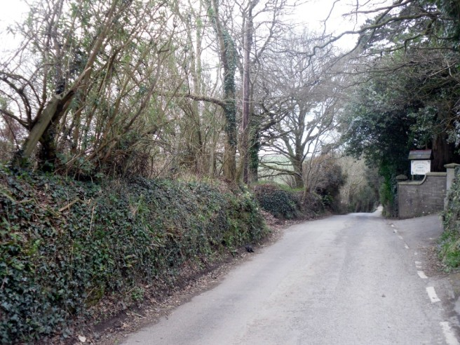 Photo of rural road leading to Coombe Junction Halt