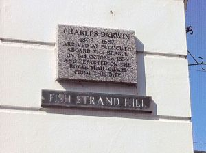 Photo of Falmouth Darwin Plaque