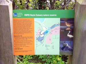 Lelant nature reserve