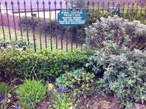 St Erth garden
