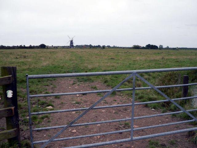 Berney Arms fields