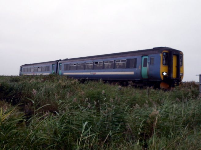 Train approaches Berney Arms