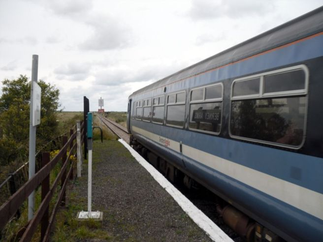 Train at Berney Arms station
