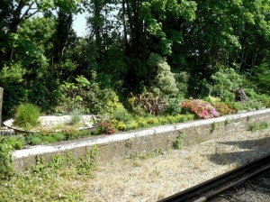 Shanklin station garden