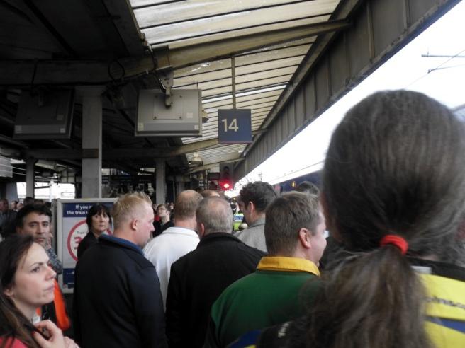 Rugby crowds